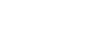 audison-logo-web-white